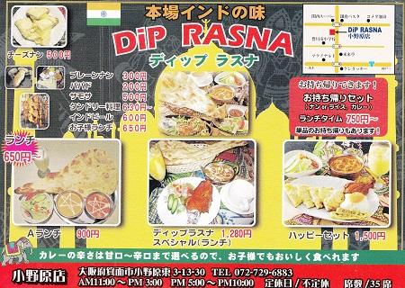 DiP RASNA34