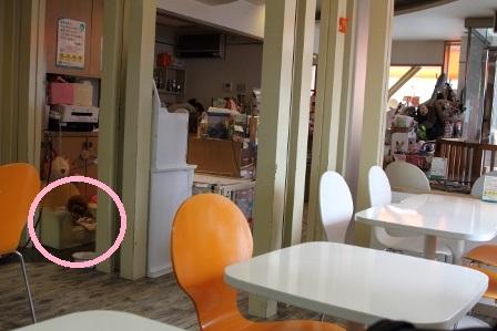 Lanan Cafe(ラナンカフェ)23