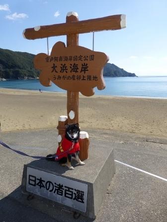 大浜海岸10