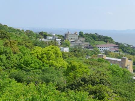 三河高野山2