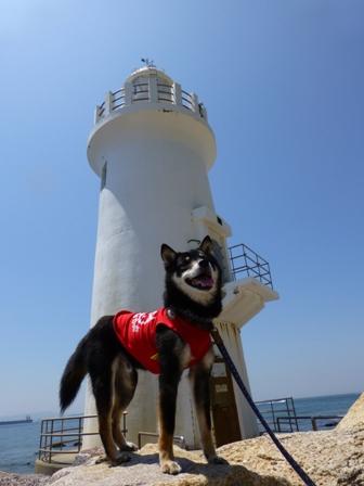 伊良湖岬灯台7