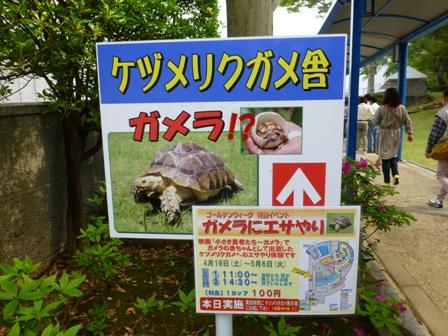 ともやま公園10