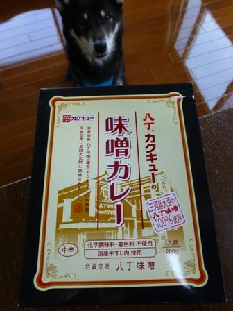 カクキュー味噌カレー1