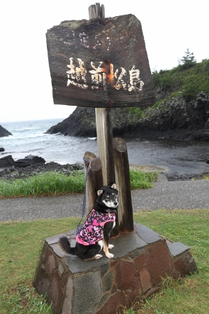 越前松島17