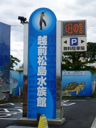 越前松島水族館1