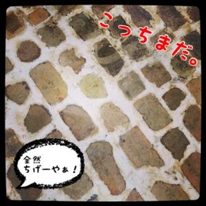 fc2blog_201404111454240e8.jpg