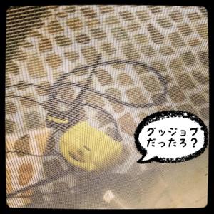 fc2blog_20140411150556e0e.jpg