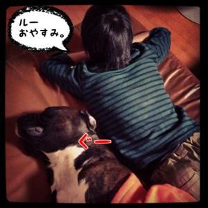 fc2blog_20140415192941728.jpg