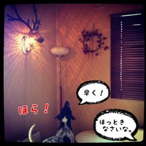 fc2blog_20140609164127b05.jpg