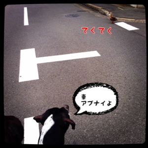 fc2blog_201407231709373a3.jpg