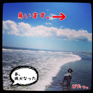 fc2blog_20140817181810fee.jpg