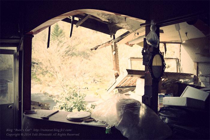 ホテル樹林(廃墟)_掛け鏡の見える風景