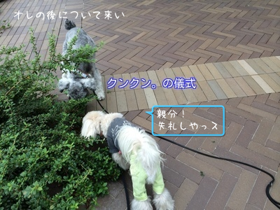 20140903155215248.png