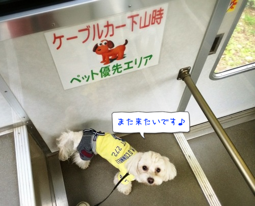 201409221312207fc.png