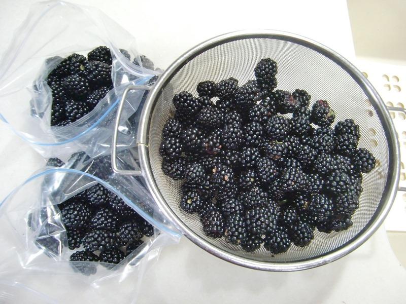 140717blackberry
