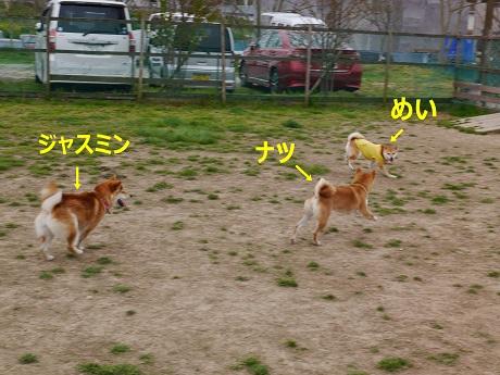 4高速3人娘