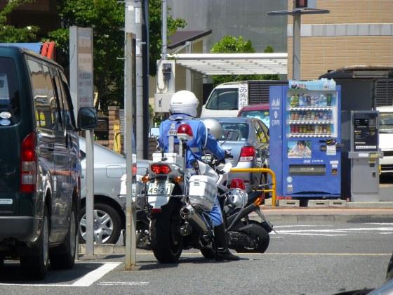 P1120050.jpg