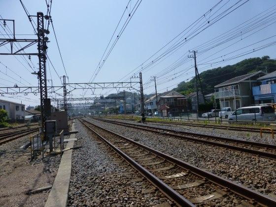 P1120057.jpg