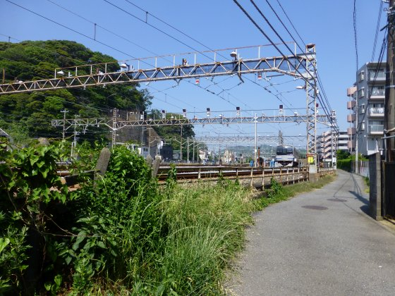 P1120062.jpg