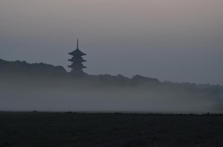 DSC_5189霧の朝