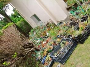 新居に大移動したタニサボ~第一便、梅雨時ですが軒下で引っ越すまで放置します(ToT)/~~~2014.06.12