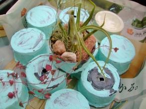 初めてのリメ缶作り、5日くらいで出来上がりました~さっそくチランジアを飾って簡単に楽しみます♪2014.02.24