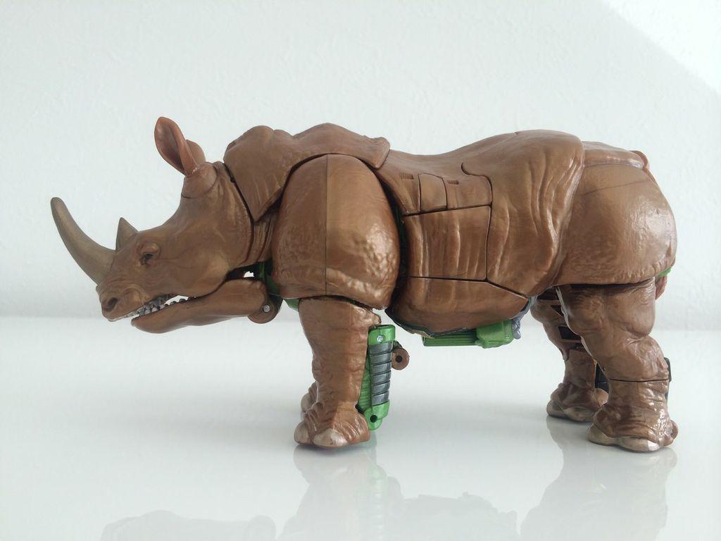 Rhinox3.jpg