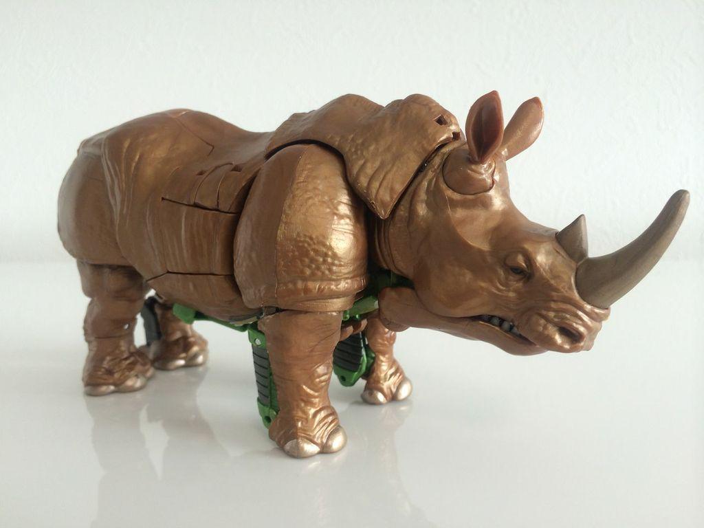 Rhinox4.jpg