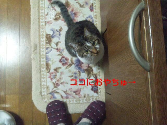 fc2_2014-04-04_16-24-03-918.jpg