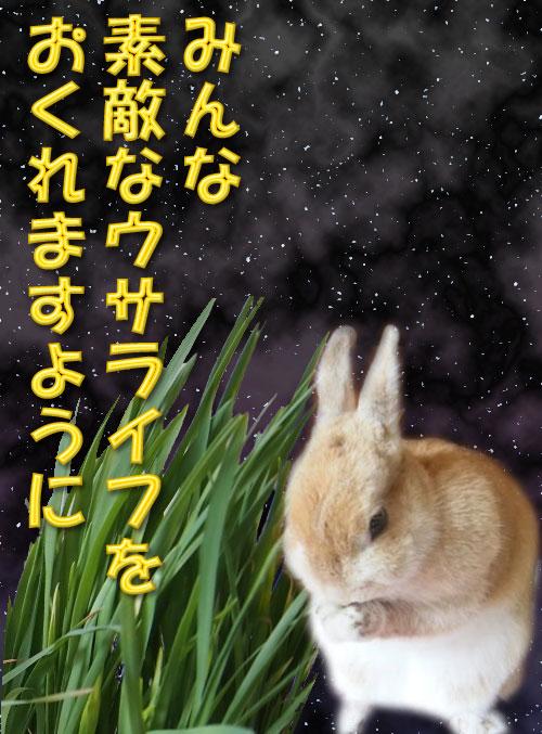 20140707181557f6c.jpg