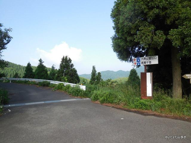 DSCN0708.jpg