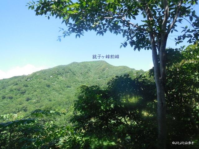 DSCN1603.jpg